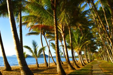 Cedar Rd Palm Cove Queensland